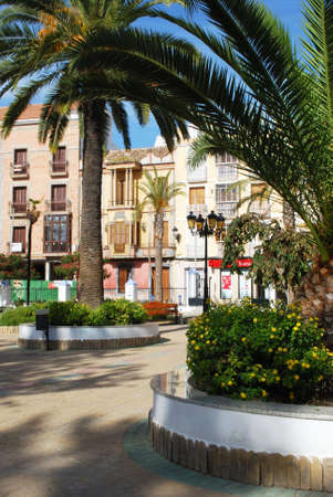 town square: Palm trees in the town square with shops to the rear, Rute, Cordoba Province, Andalusia, Spain, Western Europe. Editorial