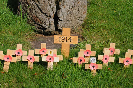 stafford: Poppies on crosses commemorating the start of World War I in 1914 in the grounds of the Collegiate Church of St Mary, Stafford, Staffordshire, England, UK, Western Europe. Editorial