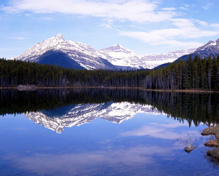 snow capped mountains: View across a Herbert Lake towards the snow capped mountains and pine trees, Banff National Park, Alberta, Canada. Stock Photo