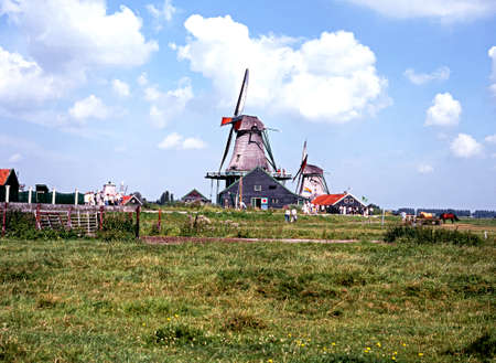 zaanse: Windmills seen across a meadow, Zaanse Schans, Holland, Netherlands, Europe.