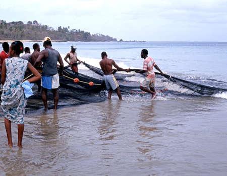 hauling: Local fishermen bringing in the fishing nets from the sea along Grafton Beach, Stonehaven Bay, Tobago, Trinidad and Tobago, Caribbean.