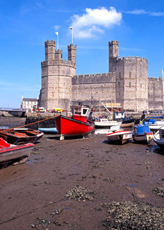 tethered: View of the medieval castle fortress with fishing boats in the foreground, Caernarfon, Gwynedd, Wales, UK, Western Europe.