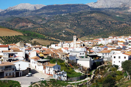 olive groves: View of the town with olive groves and mountains to the rear, Rio Gordo, Costa del Sol, Malaga Province, Andalusia, Spain, Western Europe. Stock Photo