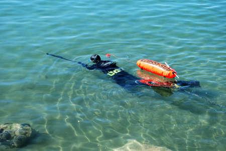 snorkelling: Man snorkelling with harpoon in the sea near the shoreline, Fuengirola, Costa del Sol, Malaga Province, Andalucia, Spain.