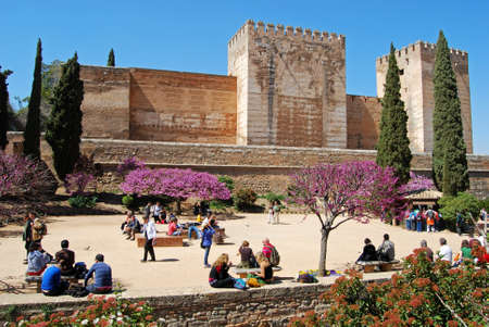 cistern: Cistern Court Plaza de los Aljibes, East side of the castle with pink tree blossom in foreground and tourists enjoying the sights, Palace of Alhambra, Granada, Granada Province, Andalusia, Spain, Western Europe. Editorial