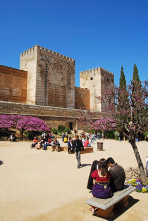 Cistern Court (Plaza de los Aljibes), East side of the castle with pink tree blossom in foreground and tourists enjoying the sights, Palace of Alhambra, Granada, Granada Province, Andalusia, Spain, Western Europe.