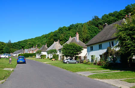 thatched cottage: Thatched cottage along the main village street, Milton Abbas, Dorset, England, UK, Western Europe.