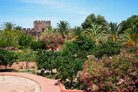 Courtyard gardens inside the Medieval castle with battlements and tower to the rear, Silves, Portugal, Europe.