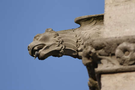 esoterism: Gargoyle, Cathedral of Amiens, France