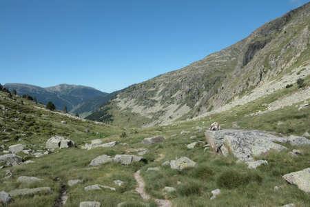 Mountain in Andorra, Pyrenees