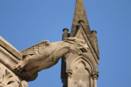 esoterism: Gargoyle in cathedral Notre Dame, Amiens, Picardie in north of France