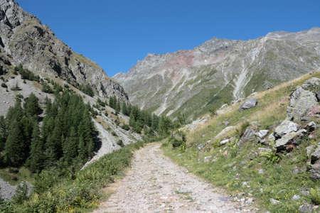 alpes: Alpine footpath in Champsaur, Provence region of France