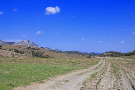 roussillon: Path in Fenouilledes, Pyrenees orientales in south of France