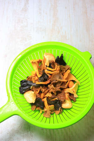Forest mushroom strainer, chanterelle and horn of plenty