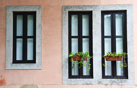 Old windows of house with flowerpot