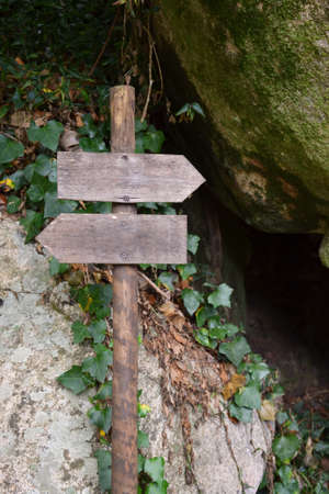 Signpost in a forest Stock Photo