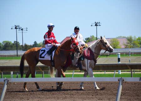 Racehorses and jockeys galloping