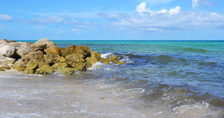 Vibrant seashore at summer
