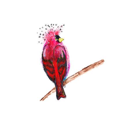 bird drawing: Bird drawing Stock Photo
