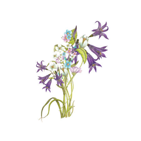forget me not: Bouquet of wildflowers Stock Photo