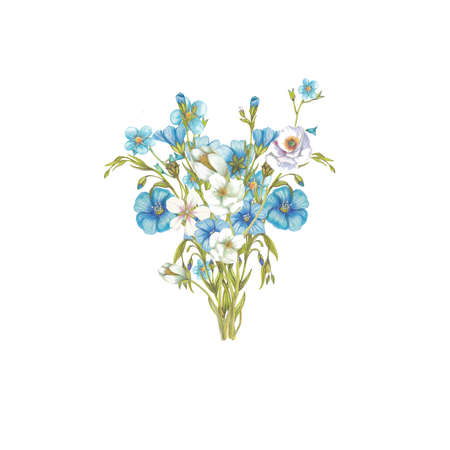 flax: Bouquet of blue flowers Stock Photo