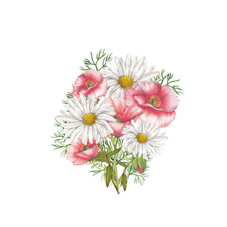chamomile: Bouquet of red poppies and chamomile Stock Photo