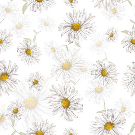 chamomile: Chamomile pattern