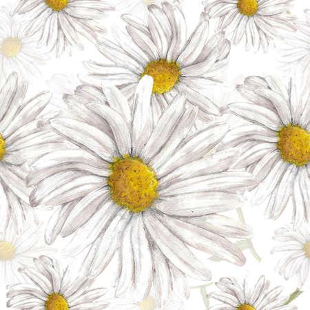 chamomile: Chamomile