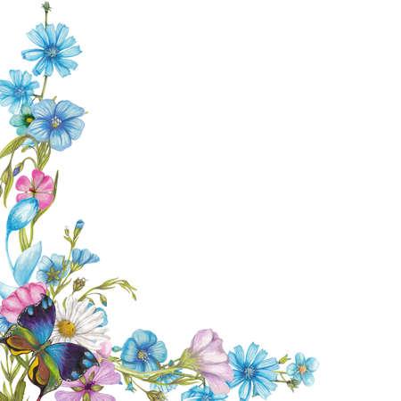野の花と蝶