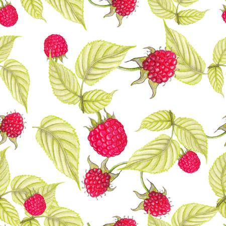 raspberries: Raspberries seamless pattern