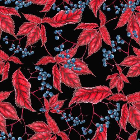 wold: Wold grape pattern Stock Photo