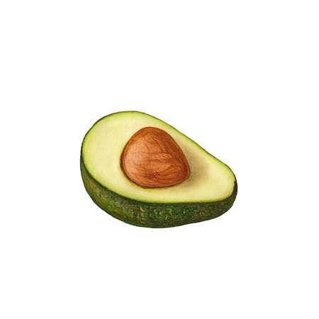 avocado: Avocado Stock Photo