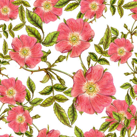 Briar pattern