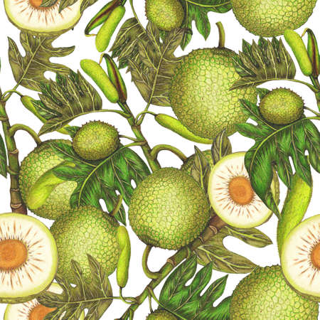 Seamless pattern of hand drawn breadfruit