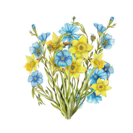 Hand drawn bouquet of narcissus flowers,flax flowers Stok Fotoğraf