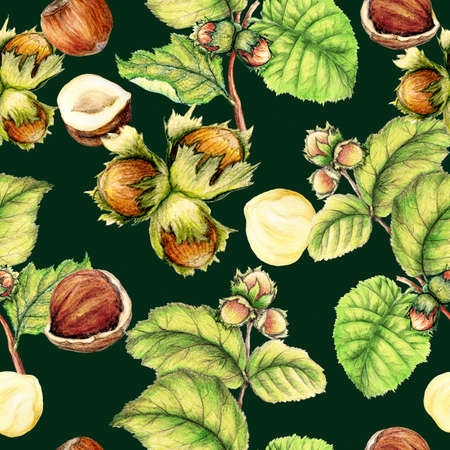 Seamless pattern of hand drawn hazelnuts