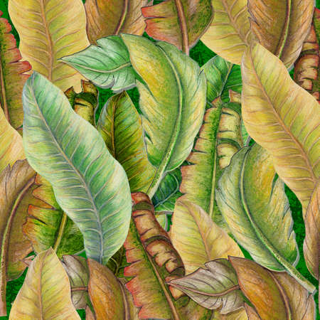 Seamless pattern of tropical plants,banana leaves,palm leaves