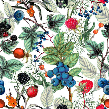 Botanical seamless pattern of  hand drawn berries,Autumn seamless pattern