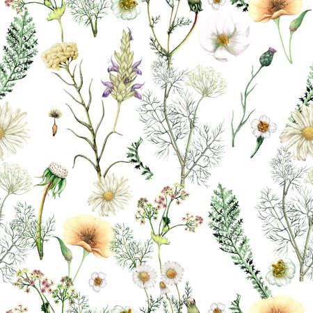 Watercolor seamless pattern of hand drawn wildflowers Stockfoto