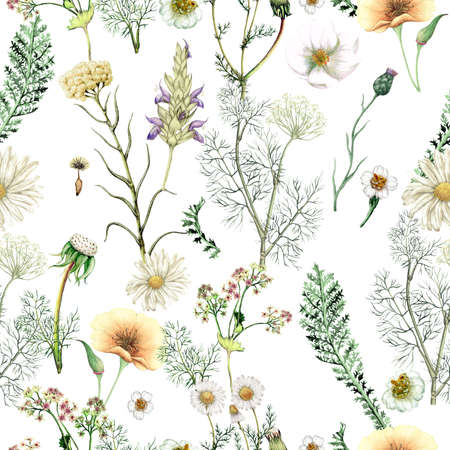 Watercolor seamless pattern of hand drawn wildflowers Stock Photo