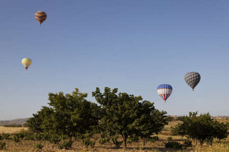 sheeny: Hot air balloons in blue sky and trees, horizontal landscape, trees, morning sky, vista, copy space, crop area