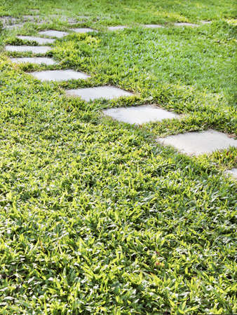 crop margin: Vertical portrait of lush green natural non grass lawn with stepping flags stones in an arc, copy space and crop space Stock Photo