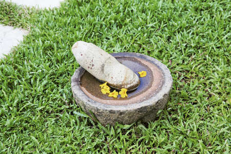 Large pestle and mortar containing water with floating Yellow Callibrochia Kerala bird bath feature with garden path pavings cutting top corner