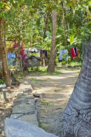 crop margin: Retrato vertical de Kerala de la India rural, una aldea del bosque con el lavado de la l�nea en el d�a de lavado, los m�rgenes de los cultivos y espacios vac�os Foto de archivo
