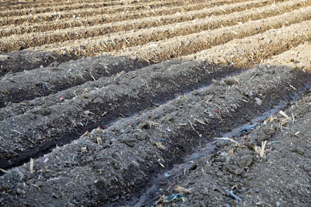 furrows: Landscape of diagonal furrows an irrigated farm in Gujarat India Stock Photo
