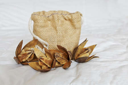 A display of cotton dehydrated buds with open petals showing cotton squares with a hessian gift holdall presentation bag on a ruffled linen backdrop  Generic image taken in a Bangalore studio, India Stock Photo