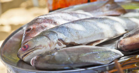 horizontal shot of fresh sea fish on a silver platter display on a able in the shade of a tree outdoors  Generic shot location was Goa India and fish believed to be sea bass, pomfret and soumi Stock Photo
