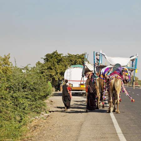 Formato cuadrado de un tren caravana de camellos haciendo su camino a lo largo de Rajasthan Ahmedabad Camino Los hombres han ido adelante con su reba�o de ovejas y cabras, mientras que las mujeres y los ni�os siguen con tiendas de campa�a y enseres dom�sticos Foto de archivo - 18845396
