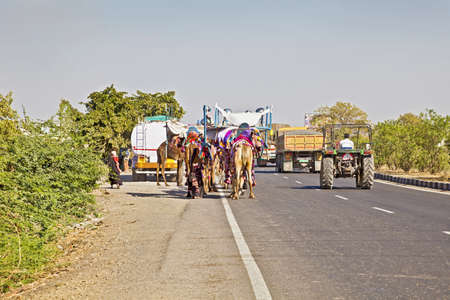 overtaking: Landscape along the Ahmedabad Road in Gujarat India of typical conjestion on India highways of users moving at different speeds and agendas  Camel train, tanker parked up, trucks and tractors goinabout their business  Stock Photo