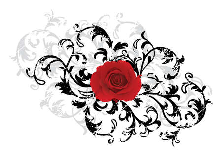 classicism: Black floral background with red rose
